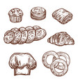 sweet bread bun sketch of bakery pastry product vector image vector image