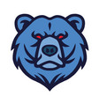 bear logo mascot vector image vector image
