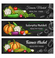 healthy farmer market vegetables and salads vector image vector image