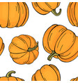 pattern with pumpkins on white background autumn vector image