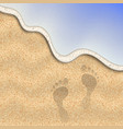sand beach vector image