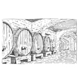 wine barrels in cellar vintage old looking vector image
