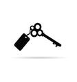ancient key vector image