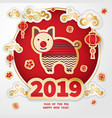 2019 year of the pig vector image vector image