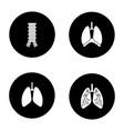 internal organs glyph icons set vector image vector image