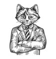 kitten businessman sketch engraving vector image vector image