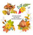 autumn season collection vector image