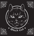 hand drawn black cat with moon on his forehead vector image vector image