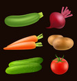 vegetables food realistic fresh vegan healthy vector image vector image