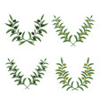 olive branch wreaths isolated on white vector image