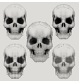Human skulls in vintage halftone style vector image