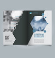 brochure geometric hexagon layout design template vector image vector image