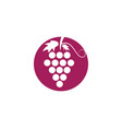 bunch of wine grapes with leaf icon for food apps vector image
