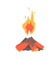 burning bonfire with wood vector image vector image