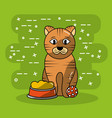 cat pet sitting with bowl food and ball toy vector image vector image