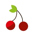 cherry fresh fruit drawing icon vector image