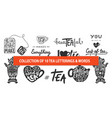 set tea lettering slogans words and phrases vector image