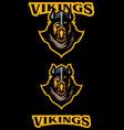 vikings team mascot vector image vector image