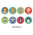 funny animal icon set vector image
