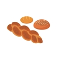 Bread Design Flat Isolated White vector image vector image