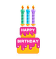 happy birthday cake dessert with candles sweets vector image vector image