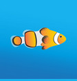 orange fish vector image vector image