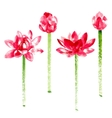 set with red watercolor lotus vector image vector image