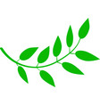 simple green branch leaf vector image