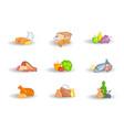 supermarket food sets vector image