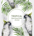 Tropic card watercolor with colorful parrot
