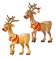 cartoon figures of christmas deer isolated vector image vector image