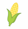 corn cob colorful vector image