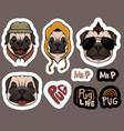 fashion pug dog stickers vector image vector image