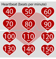 Heartbeat infographic vector image vector image