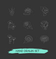 set of plant icons line style symbols with vector image vector image