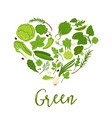 vegetables and green lettuce salads diet heart vector image vector image