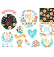 BIG Wedding graphic set arrows hearts laurel vector image