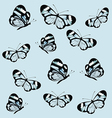 Pattern with butterfly with transparent wings vector image vector image