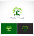 tree nature botany logo vector image