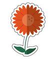 cartoon gerbera flower natural vector image