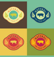 natural fresh pork food set vector image vector image