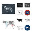 veterinary clinic cartoonblackflatmonochrome vector image