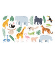 flat tropical animals from african savannah vector image vector image