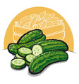 fresh cucumbers vector image
