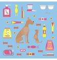 Infographic elements with dog care vector image vector image