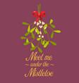 meet me under the mistletoe vector image vector image