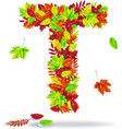 The letters of autumn leaves with drops of water vector image vector image