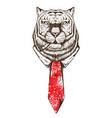 tiger face sketch vector image