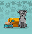 dog pet sitting with bed and bowl food vector image