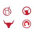 red bull taurus logo template icon vector image